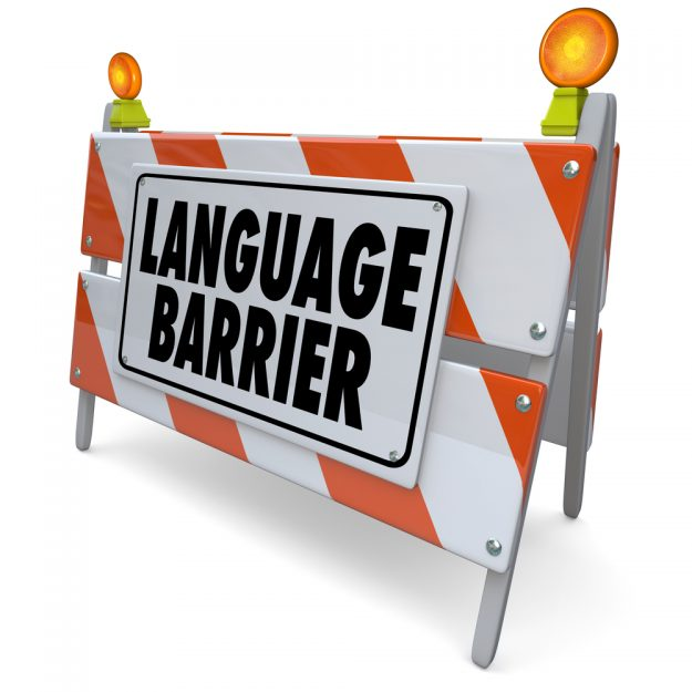 language services
